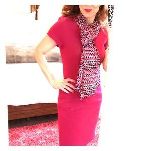 Fushia V-Neck Limited Career Dress